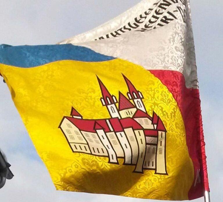 Umzug Deutschland 2015 (2)
